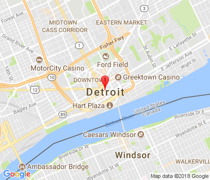 Garage Door Shop, Detroit, MI 248-313-4849
